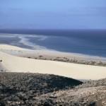 Sotavento. Fuerteventura web