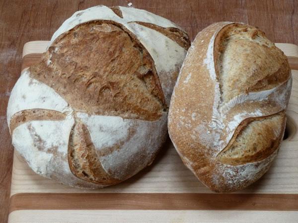 bread school
