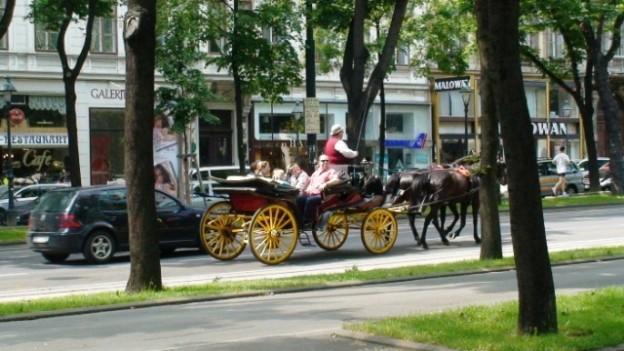 vienna carriage