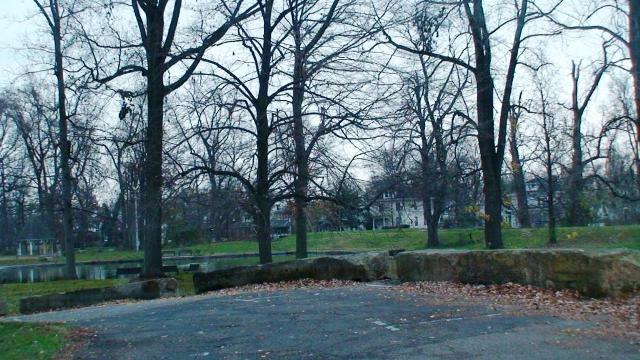 ali park 2