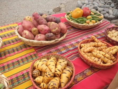 Mistura Andean potatoes