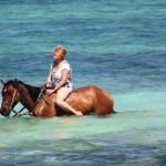 Cayman Islands 403
