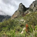 Climbing Table Mountain With An Expert Guide