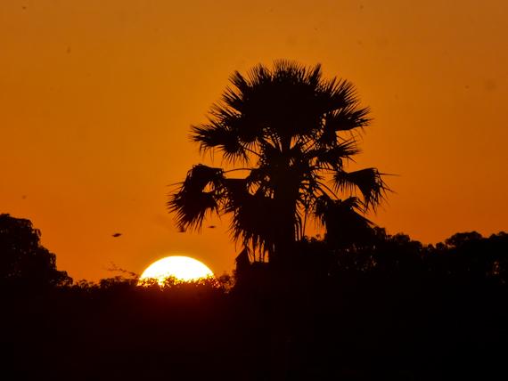 Sunrise at Bao Bolong Wetland Reserve
