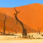 Namibia's Dramatic South