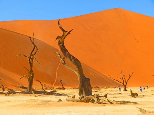Namib desert Sossusvlei IMG 2107 2 copy