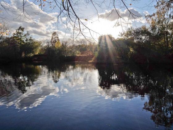 Wandsworth Common Lake e1606812094494