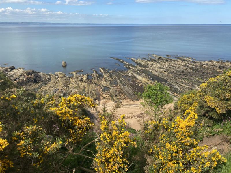 Fife coastal path