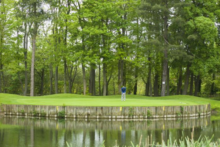 Golf.HeadlamHall.2
