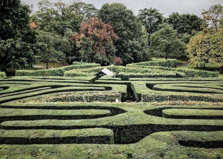 Kings Arms View To HCP Maze